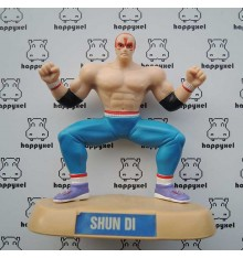 Virtua Fighter Shun Di figure