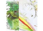 Other artbooks
